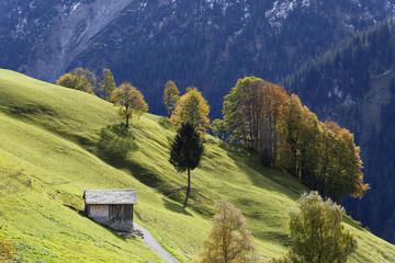 Österreich, Vorarlberg, Blick auf Alm in Marul