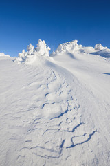 Deutschland, Bayern, Blick auf verschneite Winterlandschaft am Bayerischen Wald