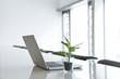 Deutschland, Köln, Laptop-und Topfpflanze auf Konferenztisch
