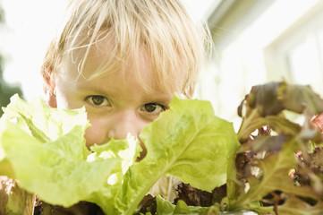 Deutschland, Bayern, Junge mit Salat