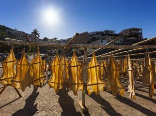 Portugal, Stockfisch zum Trocknen bei Camara de Lobos in der Nähe von Funchal