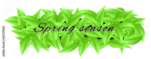"Banner made of leaves with inscription ""spring season"""