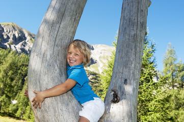 Österreich, Land Salzburg, Junge sitzt im Baum