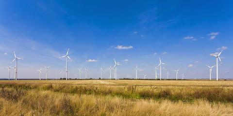 Deutschland, Sachsen -Anhalt, Magdeburg Börde, Stoppelbart Feld und Windpark im Hintergrund