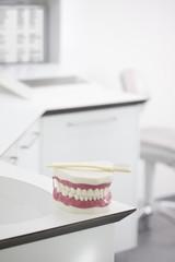 Deutschland, Ausstellung Zahnersatz mit Zahnbürste in der Zahnarztpraxis