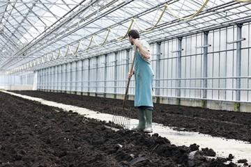 Deutschland, München, Mann graben Erde mit Gartengabel im Gewächshaus