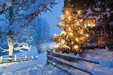 Österreich, Land Salzburg, Flachau, beleuchteter Weihnachtsbaum mit Schlitten vor der Hütte