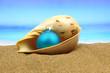 hristmas ball in a sea shell on the beach