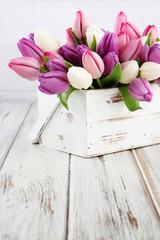 tulip background