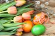 Frühlingsboten und Ostereier