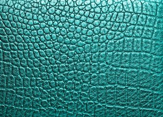 Crocodile leather, can use as background