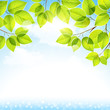 Natural background with leaves on a blue sky. Vector