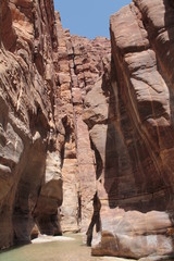 view of the route in the canyon,reserve mujib, jordan