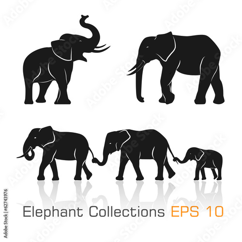 zestaw-czarno-bialych-sloni-w-roznych-pozach