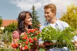 Paar im Gemüse Garten bei Ernte