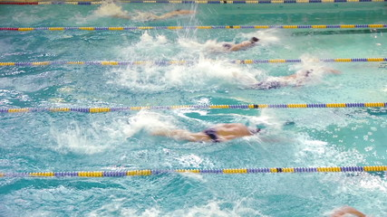 HD - Swimming competition in the Pool. Top view
