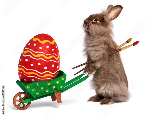 Funny Easter bunny rabbit with a green wheelbarrow and a red Eas