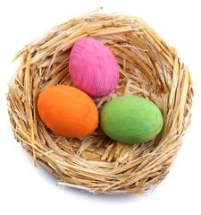 Easter eggs in nest isolated on white