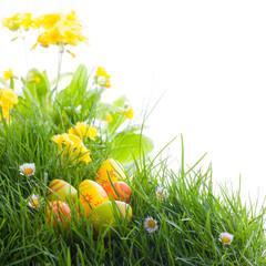 Ostern - Freisteller - Wiese - Blumen - Gras