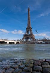 La tour Eiffel et les mouettes