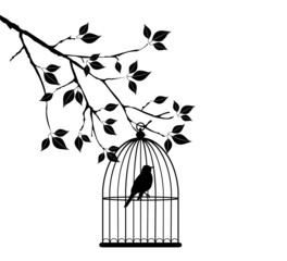 vector bird in a cage in the tree