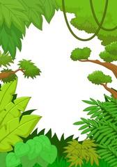 Tropical jungle background