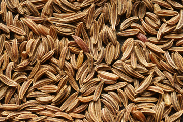The cumin seeds. Extra close-up. Background.