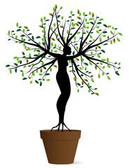 donna pianta in un vaso
