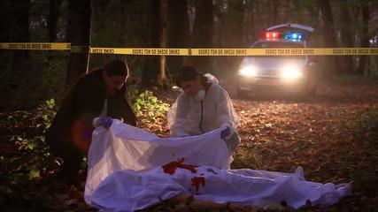 Loading Lightboxes Crime scene investigation
