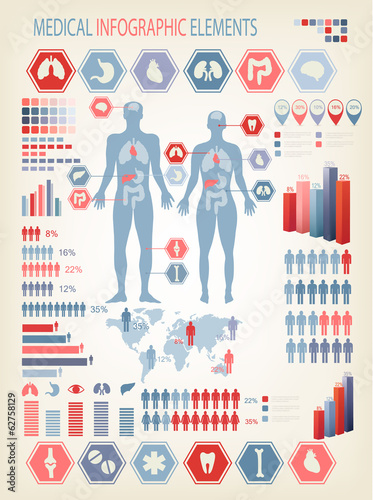 Medical infographics elements. Human body with internal organs.