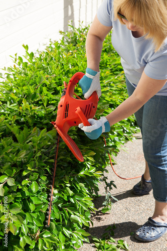 Woman trimming bushes
