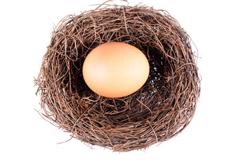 Bird's nest and egg