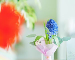 Bouquet from hyacinth flower.
