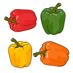 Set peppers colorfull vector