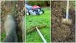 montage,entretien du jardin