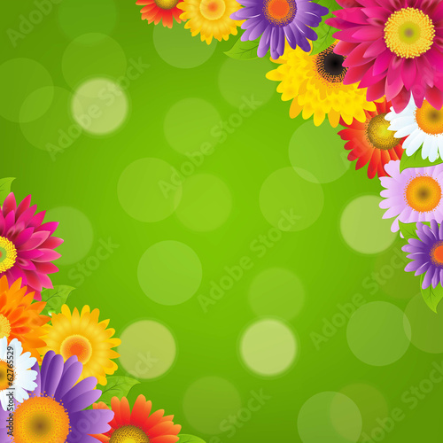 Colorful Gerbers Flowers Border With Green Bokeh