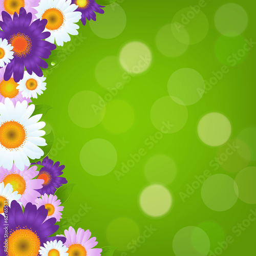 Colorful Gerbers Flowers Frame With Green Bokeh