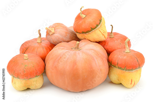 collection pumpkin isolated on white background