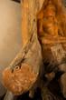 Buddha made of Teak root