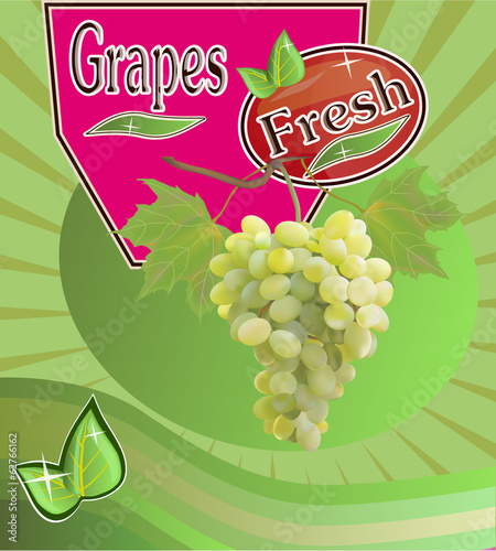 Fresh grapes juice Banner