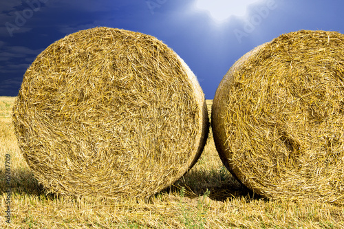 Round bales in the field