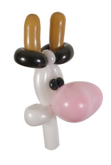 Ballon Kuh