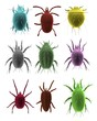 realistic 3d render of mites