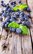 Fresh blueberry on wooden table. Fresh Berry on wooden table. Ga