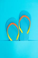 Blue flip flop