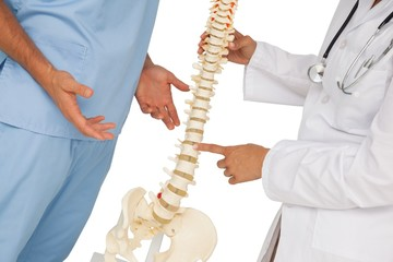 Mid section of two doctors discussing besides skeleton model