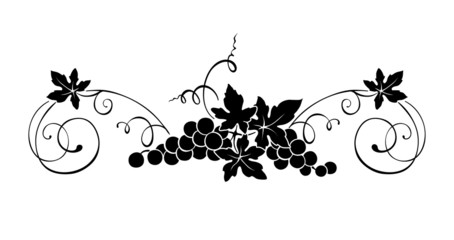 Design element - vine with swirls