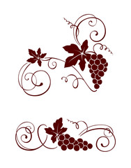 Design element - vine with swirls