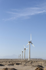 Wind generators in Egypt