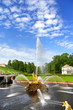 Samson Fountain in Peterhof Palace
